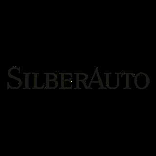 10097392_silberauto-as_22385372_a_xl.png