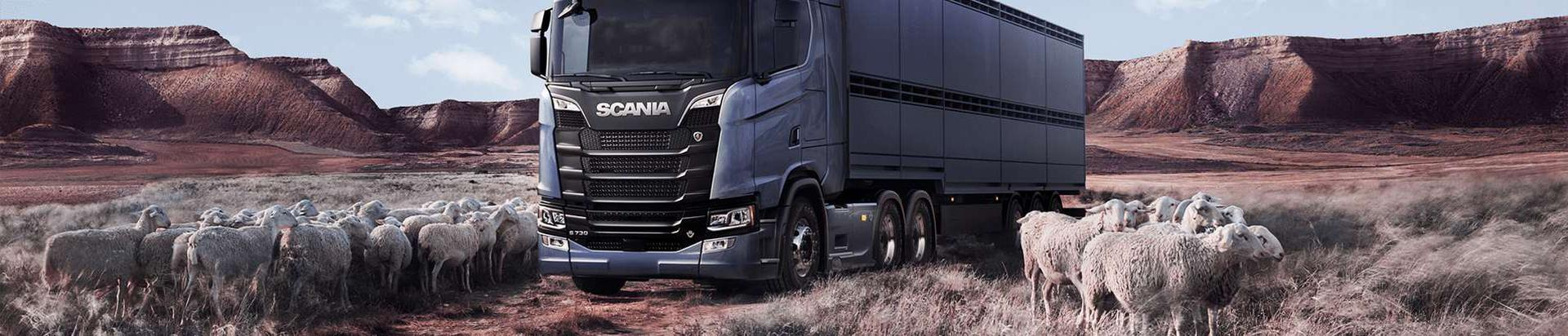 10238872_scania-eesti-as_27665868_xl.jpg
