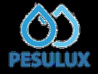 10632344_pesulux-ou_67845274_a_xl.png