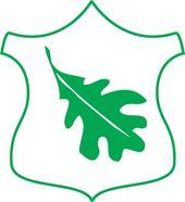 Saarte Metsamajanduse OÜ logo