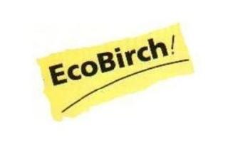 10899065_ecobirch-as_74597244_a_xl.jpeg