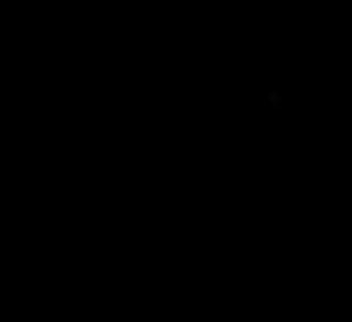 12626006_pia-pikkor-ou_54000237_a_xl.png