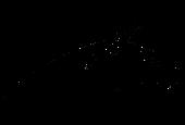 NETIHUNT OÜ logo