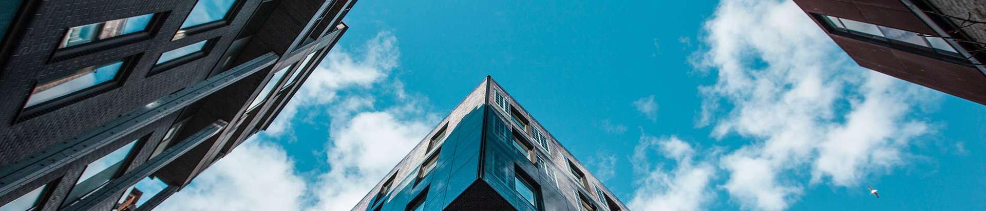 ametid, ministeeriumid jms avalik haldus, Fotode töötlemisteenused, Kunstiteosed, Linnaplaneerimis- ja maastikuarhitektuuriteenused, Tarkvara nõustamisteenused, Arhitektuuri-, insener-tehnilise projekteerimise ja maamõõtmisteenused, Tarkvara hooldus- ja parandusteenused, Tekstitöötlusteenused, Insener-tehnilised ja ehitusalased nõustamisteenused