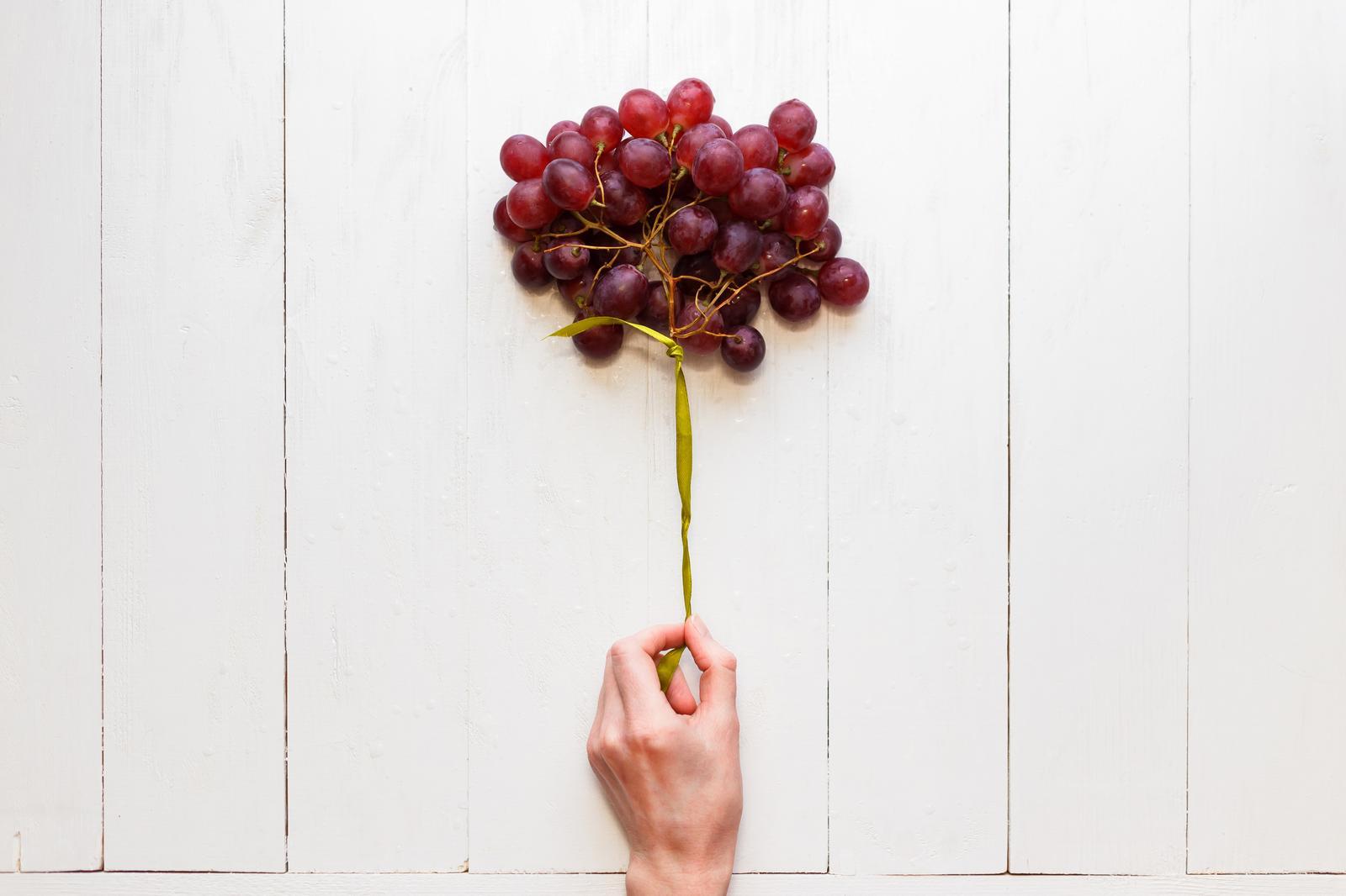 Viinamarjakasvatus Põlvamaal