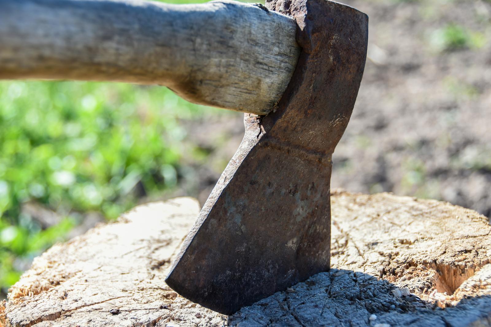 Küttepuude tootmine Eestis