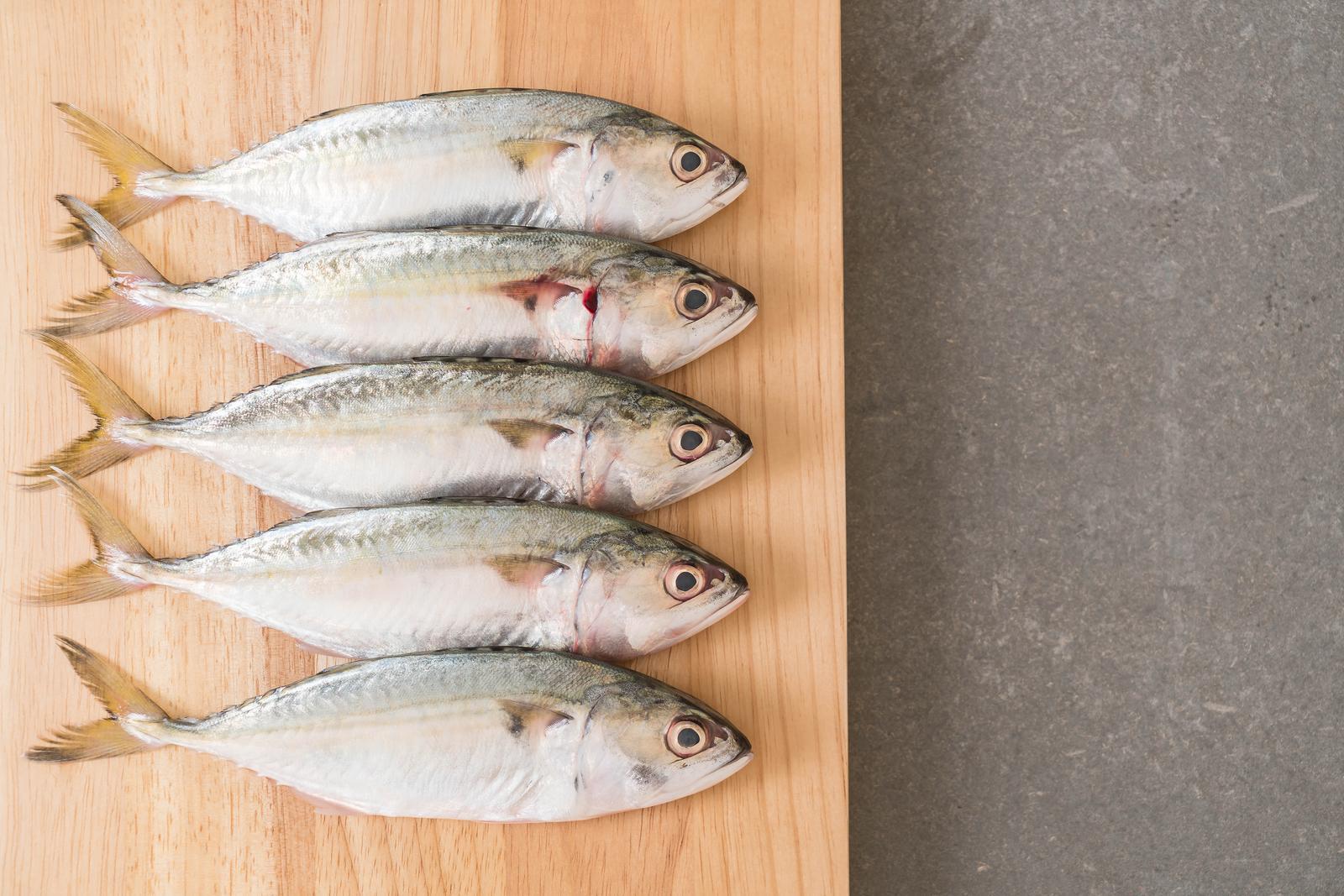Mageveekalapüük Kallastel