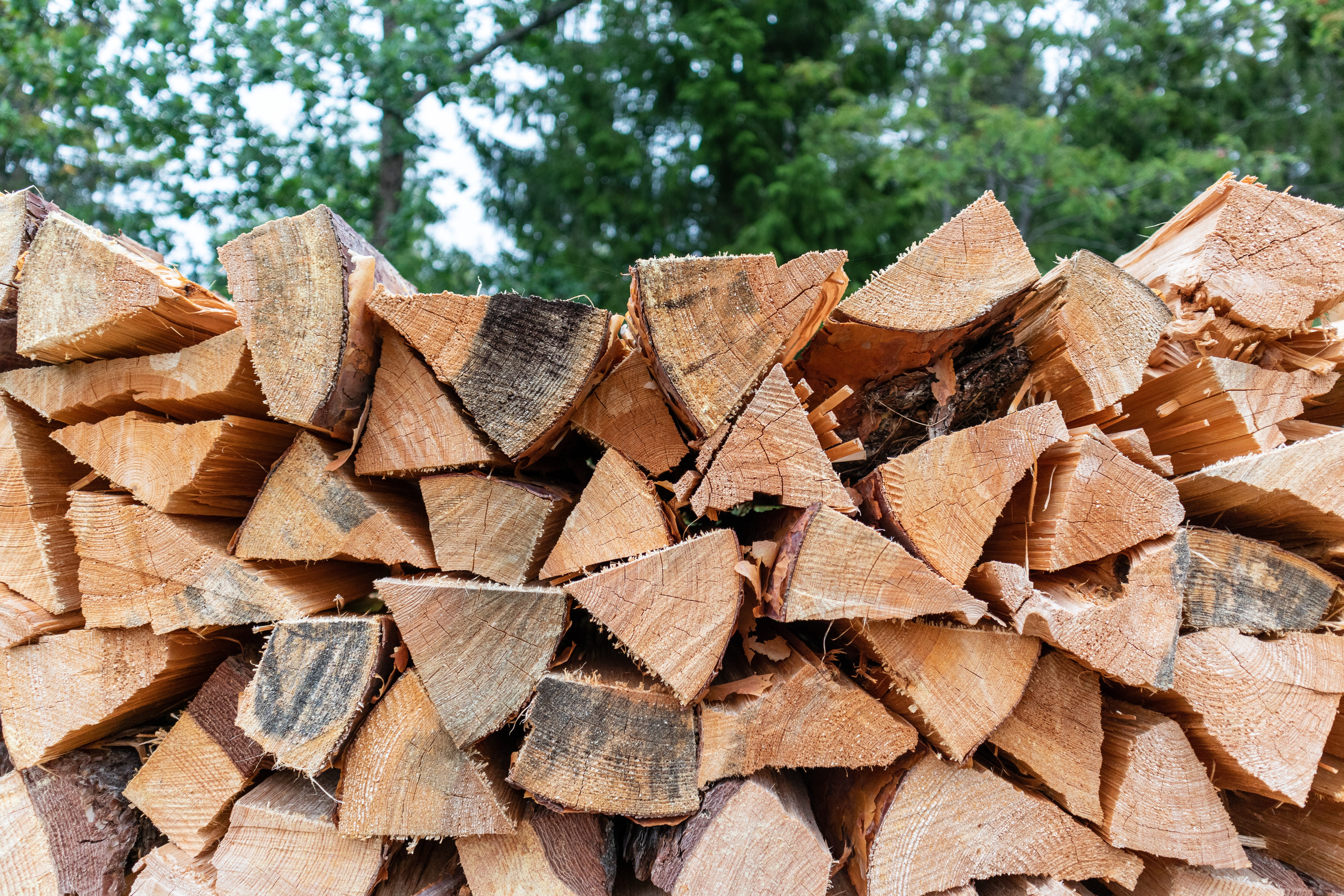 Production of wood for energy in Viljandi county