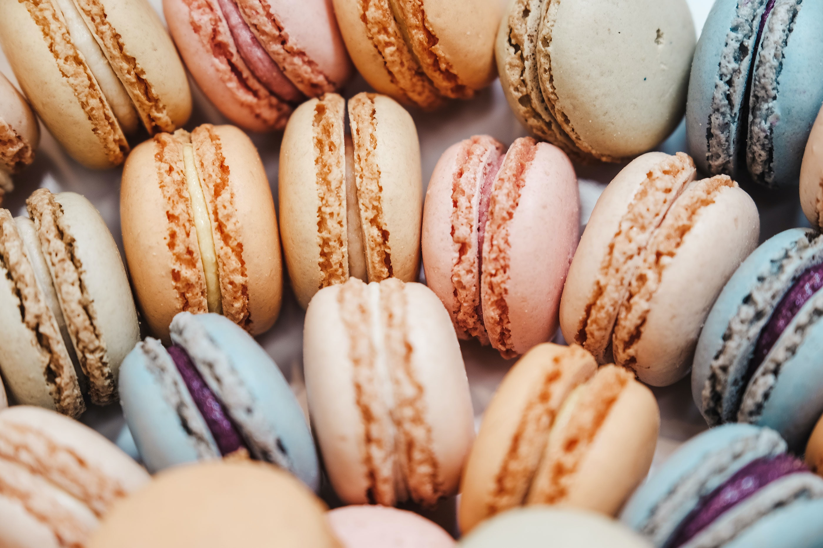 Wholesale of sugar and chocolate and pastry and bakery products in Tallinn