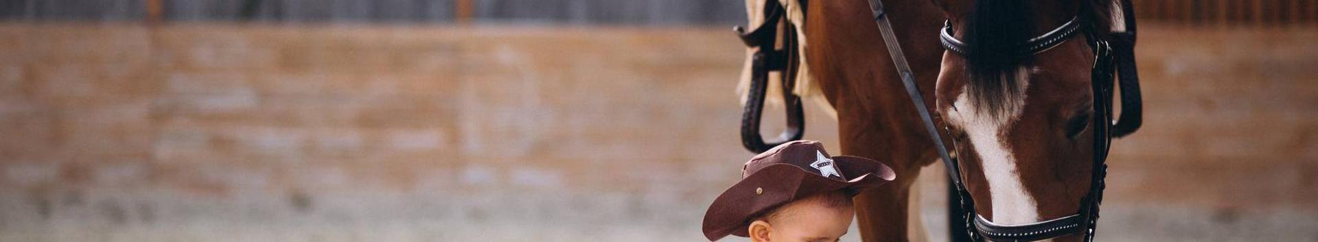 hobusekasvatus, hobuvarustus, ratsutamine, Loomakasvatus