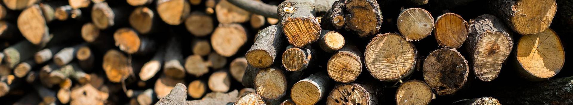 metsamajandus, metsandus