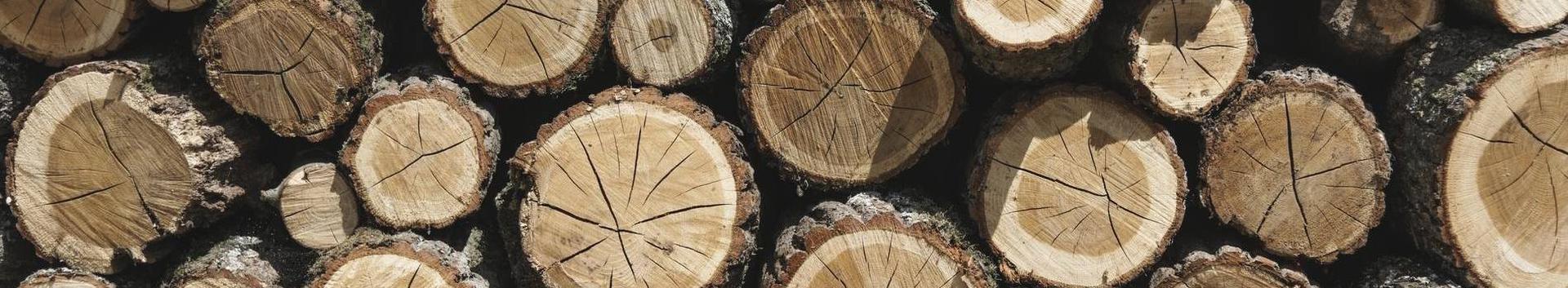metsatööd, puidu- ja paberitööstus