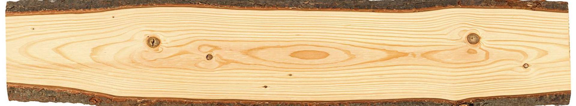 puidu- ja paberitööstus, puidutööstus, saeveskid, Elektrijaotusseadmed ja juhtaparatuur, Mitmesugused üld- ja eriotstarbelised masinad