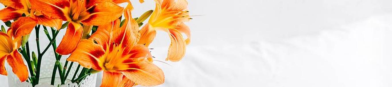 46221_lillede-ja-taimede-hulgimuuk_18926048_m_xl.jpg