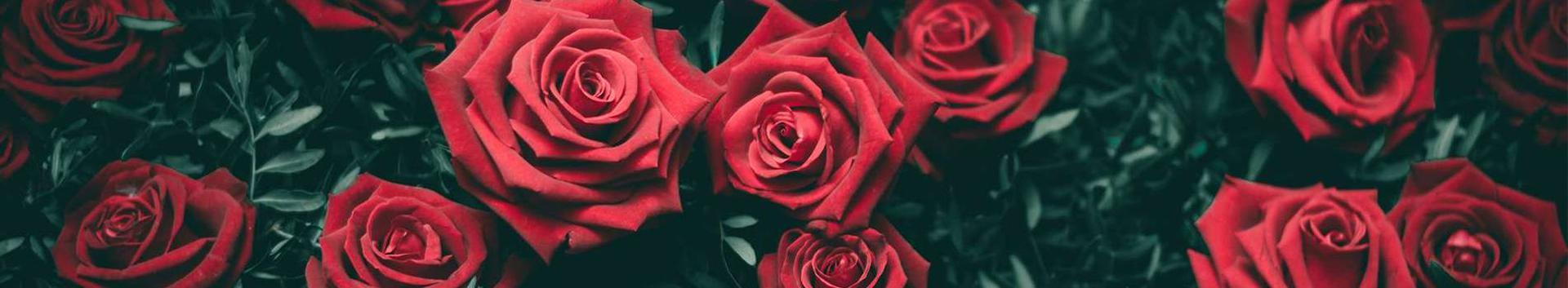 46221_lillede-ja-taimede-hulgimuuk_70429534_xl.jpg