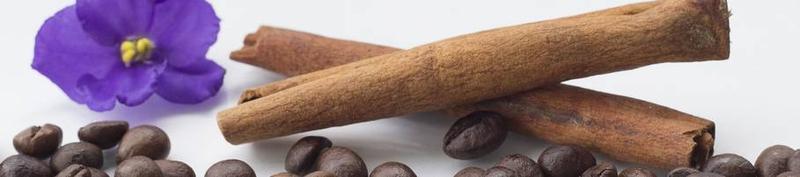 COFFEE ADDRESS OÜ:  Public Procurement