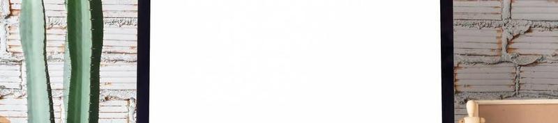 F9 DISTRIBUTION ESTONIA OÜ:  Tegevuslugu