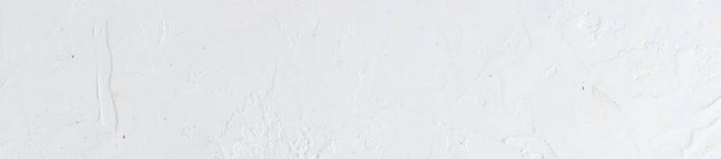 LEIBUR AS:  Tegevuslugu