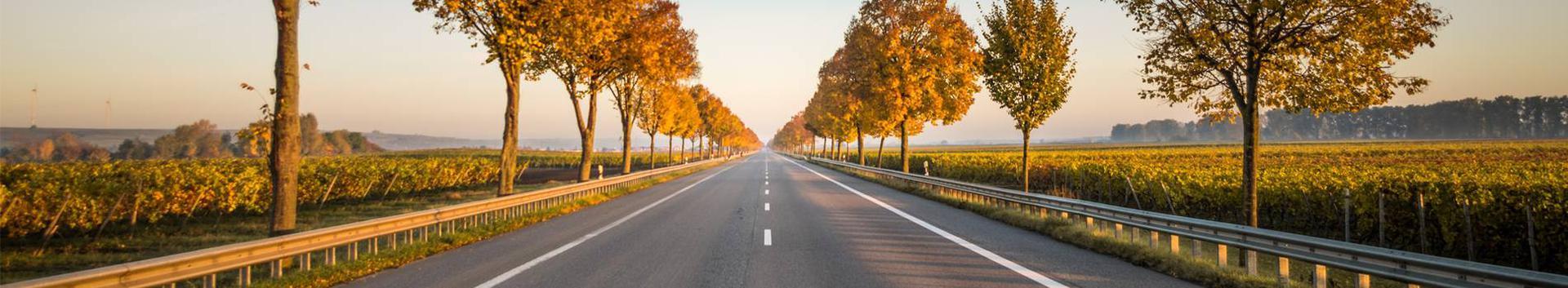 logistika, rahvusvahelised veod, transpordi- ja kullerteenused, transporditeenused