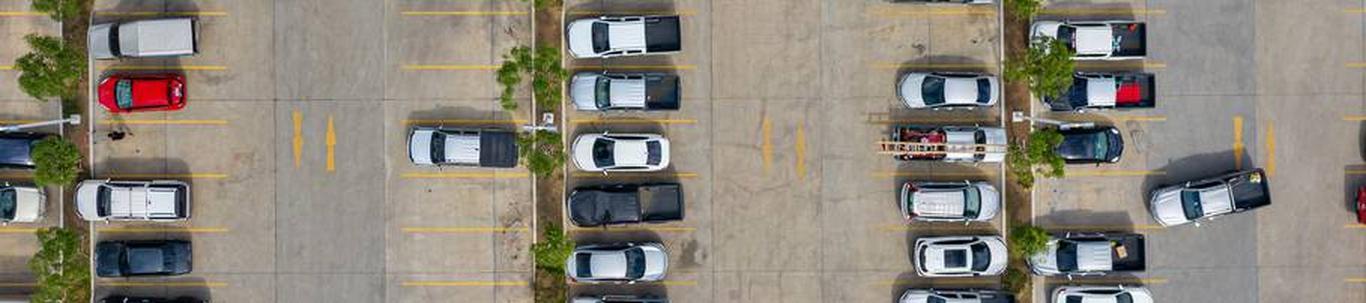 52211_parklate-tegevus_45341924_m_xl.jpg