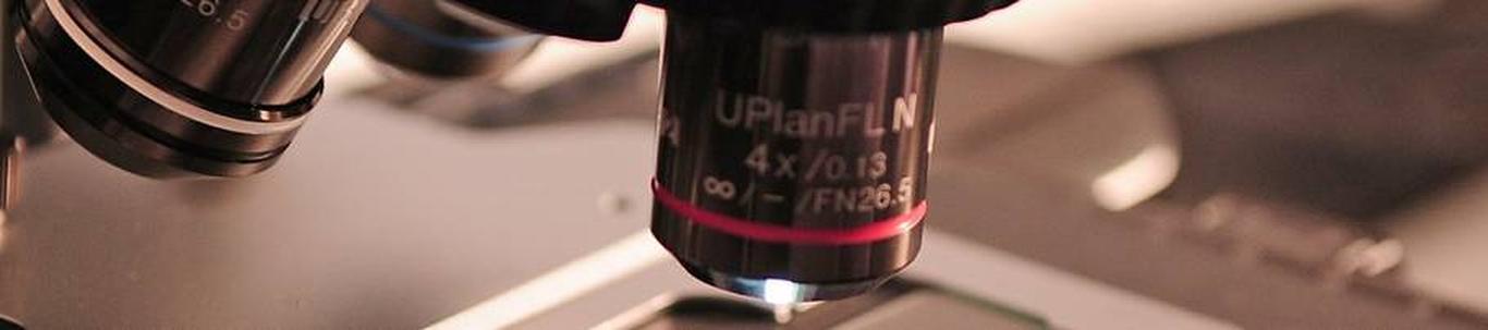 72111_teadustegevus-biotehnoloogias_17178117_m_xl.jpg
