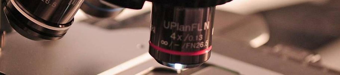 72111_teadustegevus-biotehnoloogias_73584095_m_xl.jpg