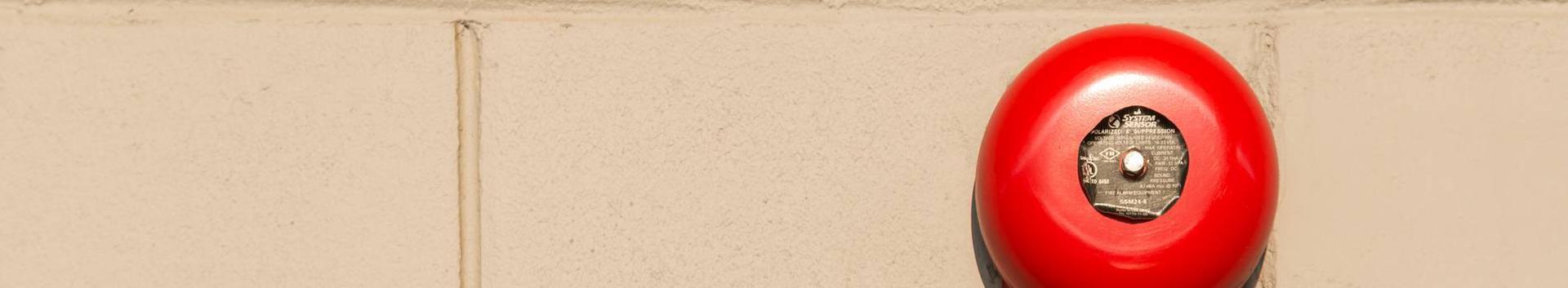 paber, papp ja nendest valmistatud tooted, köitematerjal, fotod, kirjatarbed, majapidamis- ja kantseleiliimid, kunstnikutarbed, pintslid, kirjutusmasinad ja kantseleitarbed (v.a mööbel), õppematerjalid ja näitvahendid (v.a aparaadid)
