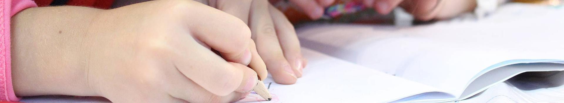 Lapsehoiuteenus jms teenused, tooted, konsultatsioonid
