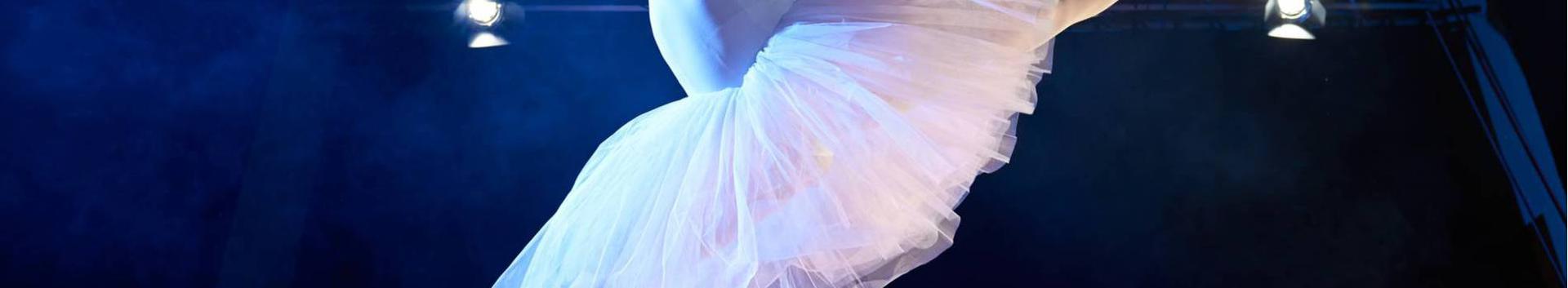 90011_teatri-ja-tantsuetenduste-tegevused_16973103_xl.jpg