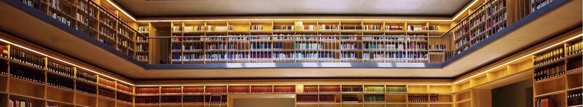 raamatud ja raamatukogud, raamatukogud