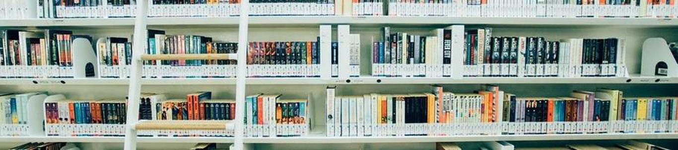 9101_raamatukogude-ja-arhiivide-tegevus_65104599_m_xl.jpg