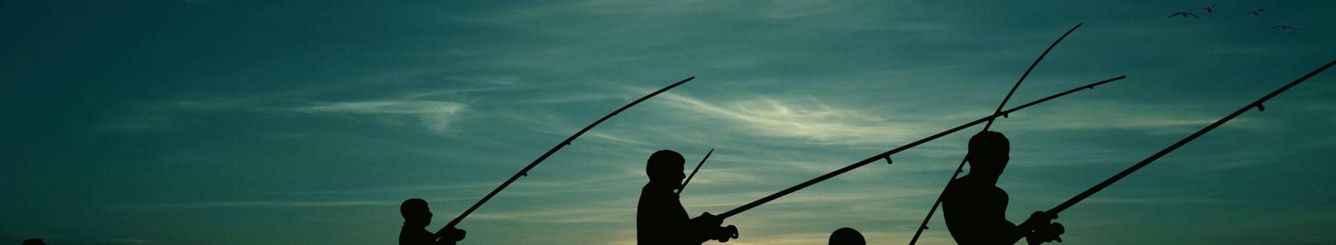 93192_sportlik-jahipidamine-ja-kalapuuk_37390030_xl.jpg